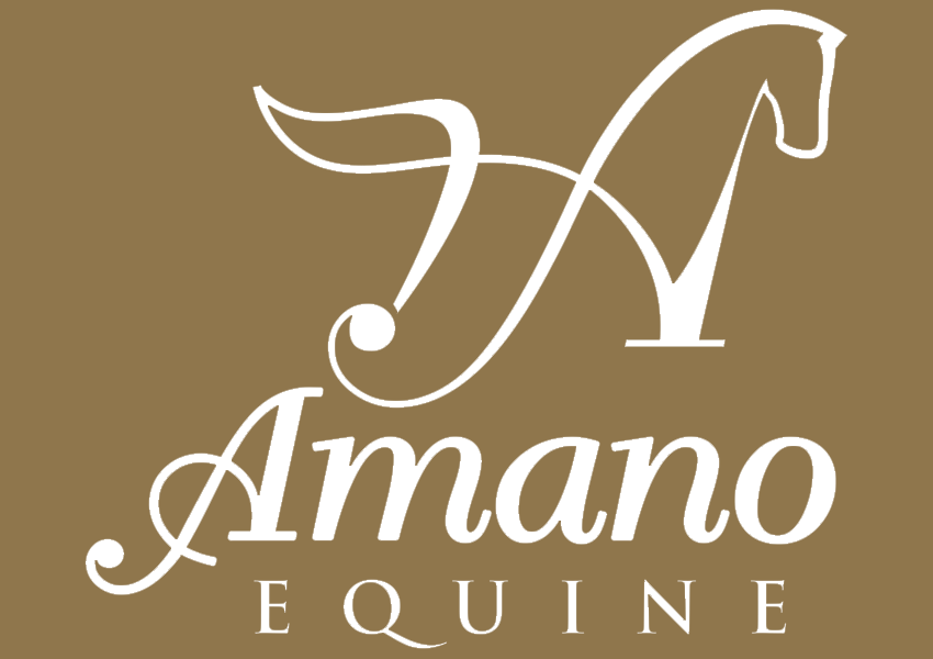 amano equine solid